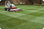 Mower Striping