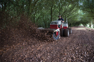 Ventrac 4500 in Australia using Power Broom - Seen here on a Macadamia Farm in Australia, the Ventrac 4500 with Power Broom makes fast work out of clearing paths and driveways.