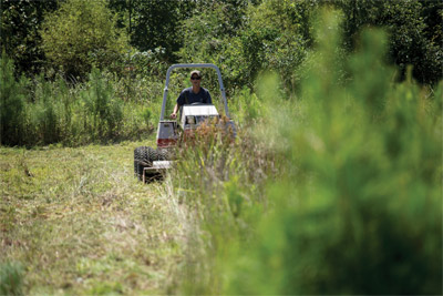 Thickets no match for Tough Cut Mower
