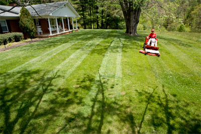 Ventrac Mower Deck striping - Professional results every time for years to come thanks to Ventrac.
