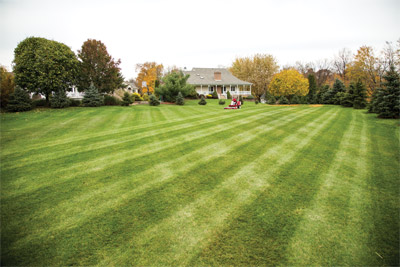 Ventrac 3400 mowing deck - Golf course quality stripes made possible by Ventrac and, with a 60 inch cutting width, in less time